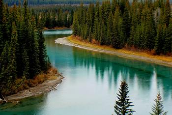 Thumb bow river canada forest 219972