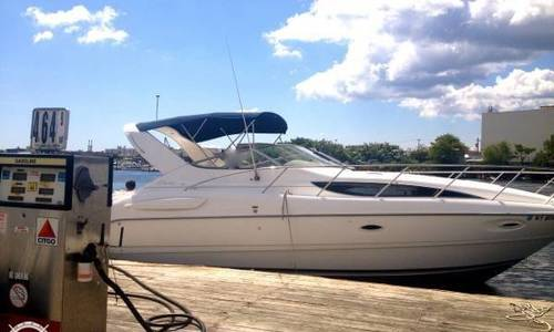 Image of Bayliner Ciera 3055 Sunbridge for sale in United States of America for $40,000 (£29,097) Buford, Georgia, United States of America