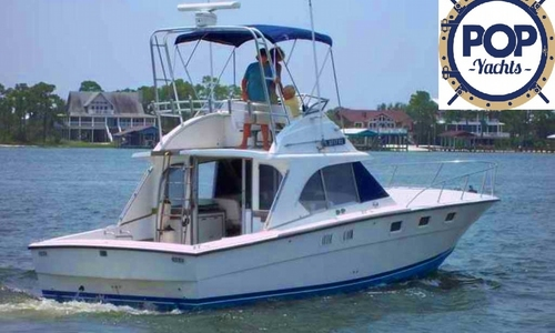 Image of Magnum Marine 380 FB for sale in United States of America for $44,500 (£32,370) Pensacola, Florida, United States of America