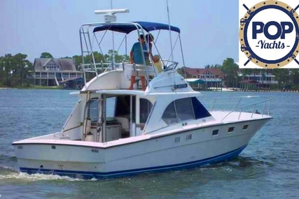 Magnum Marine 380 FB for sale in United States of America for 44.500 $ (31.681 £)