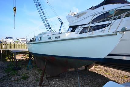 Halcyon 27 for sale in United Kingdom for £4,950