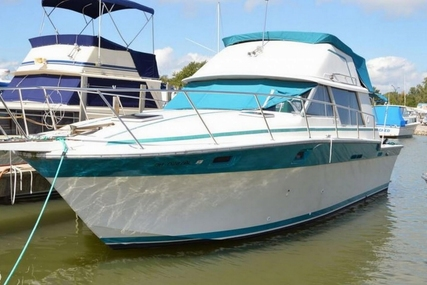 Silverton 34 Convertible for sale in United States of America for $12,500 (£9,394)