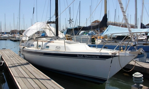 Image of Ericson Yachts E38 for sale in United States of America for $39,000 (£29,551) Alameda, California, United States of America