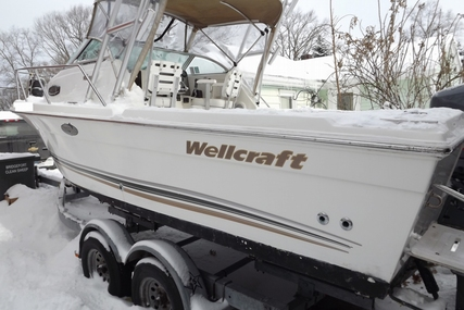Wellcraft 22 Walkaround for sale in United States of America for $19,995 (£15,096)