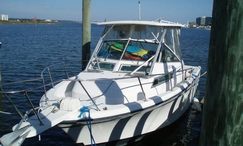 Image of Grady-White 280 Marlin for sale in United States of America for $15,500 (£12,151) Orange Beach, Alabama, United States of America