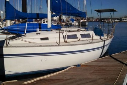 Peterson 33 for sale in United States of America for $17,500 (£13,206)
