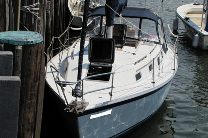 Watkins Sea Wolf 30 for sale in United States of America for $18,000 (£13,583)