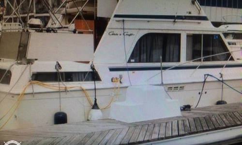 Image of Chris-Craft 35 for sale in United States of America for $30,000 (£21,823) Weehawken, New Jersey, United States of America