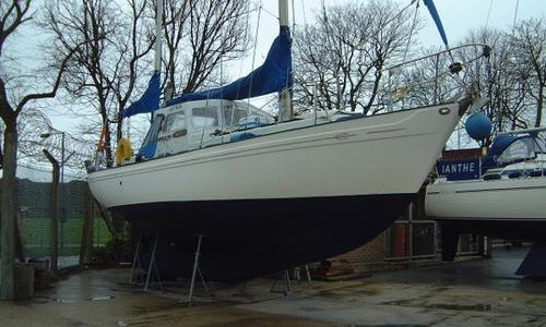 Image of NEPTUNIAN 33 for sale in United Kingdom for £23,995 Gosport, United Kingdom