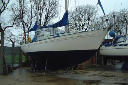 NEPTUNIAN 33 for sale in United Kingdom for £23,995