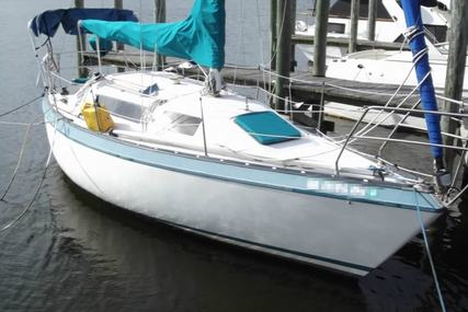 Canadian Sailcraft 27 Sloop Fin Keel for sale in United States of America for $9,000 (£6,415)