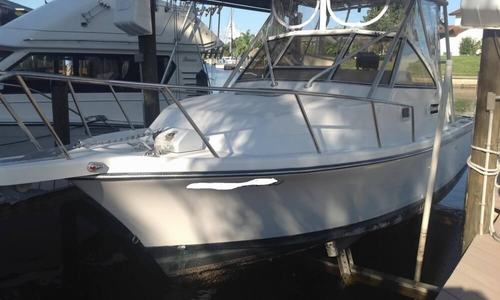 Image of Shamrock 260 Express for sale in United States of America for $30,000 (£22,734) Cape Coral, Florida, United States of America