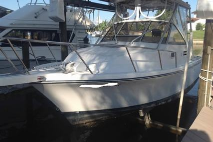 Shamrock 260 Express for sale in United States of America for $30,000 (£21,390)