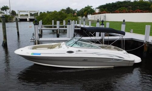 Image of Sea Ray 240 Sundeck for sale in United States of America for $22,500 (£17,051) West Palm Beach, Florida, United States of America