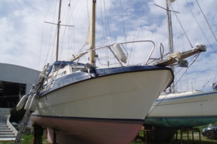 Viksund GOLDFISH 31 for sale in Portugal for €36,000 (£31,749)