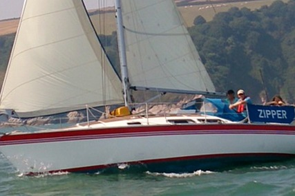 Dolphin 31 for sale in United Kingdom for £10,500