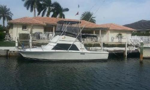 Image of Phoenix Sportfish for sale in United States of America for $23,950 (£17,422) Singer Island, FL, United States of America