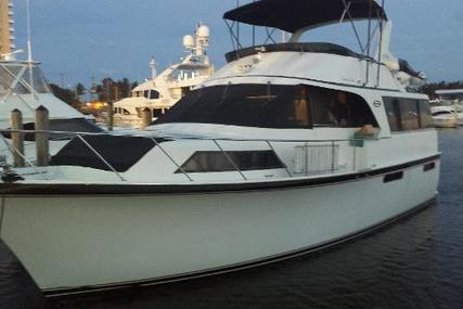 Ocean 48 Motor Yacht for sale in United States of America for $179,000 (£128,927)