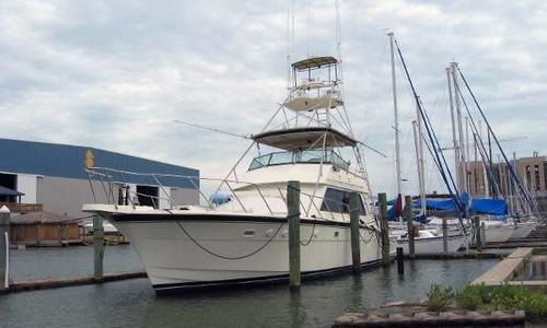 Image of Hatteras Convertible for sale in United States of America for $149,790 (£113,357) Galvenston, TX, United States of America