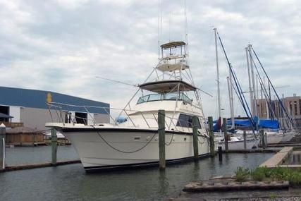 Hatteras Convertible for sale in United States of America for $149,790 (£118,985)