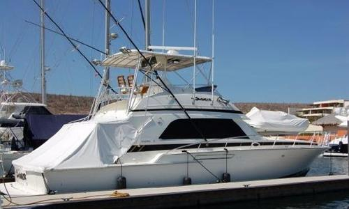 Image of Bertram 50 Convertible for sale in Mexico for $149,000 (£113,975) La Paz, Mexico