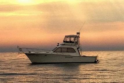 Egg Harbor Convertible Sportfish for sale in United States of America for $77,500 (£58,637)
