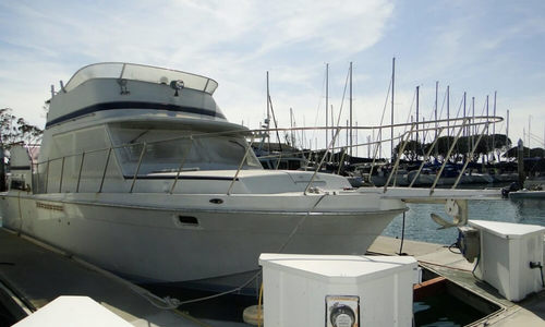 Image of Uniflite 41 Yacht Fisherman for sale in United States of America for $63,000 (£44,846) Dana Point, California, United States of America