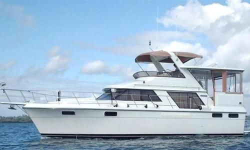 Image of Carver 4207 Aft Cabin Motor Yacht for sale in Guatemala for $95,000 (£71,992) Rio Dulce, Guatemala