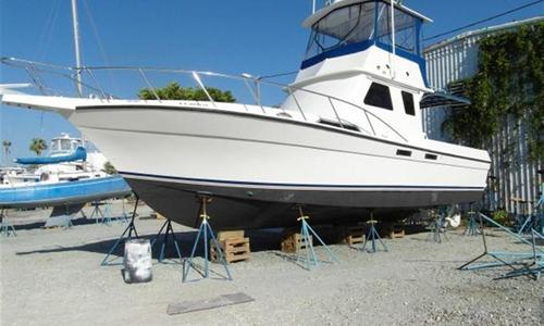 Image of Custom Sport Fish Diesel for sale in United States of America for $129,000 (£97,395) St. Petersburg, United States of America