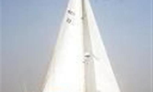 Image of Westerly Corsair Mk II for sale in Panama for $50,000 (£37,925) Bocas del Toro, Panama
