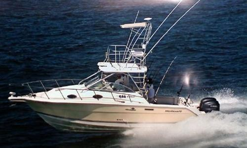 Image of Wellcraft 290 Coastal for sale in United States of America for $69,999 (£53,175) Miami, United States of America