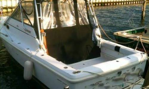 Image of Phoenix 27 Tournament Sport Fisherman for sale in United States of America for $34,900 (£26,349) Union, New Jersey, United States of America