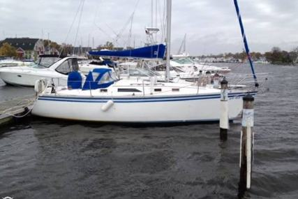 Hunter 31 Shoal Draft for sale in United States of America for $18,800 (£14,260)