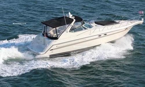 Image of Maxum 4100 SCR for sale in United States of America for $65,000 (£49,359) San Pedro, CA, United States of America