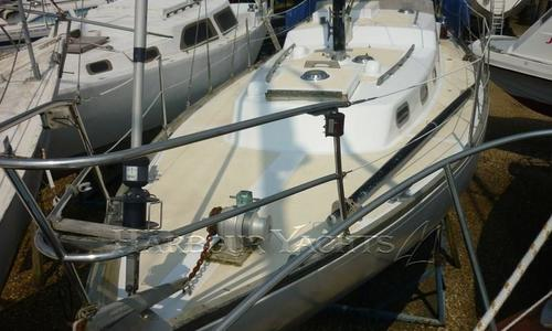 Image of Nicholson 32 for sale in United Kingdom for £ 18.000 Poole, United Kingdom
