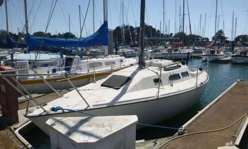 Image of Wellcraft Starwind 27 for sale in United States of America for $4,900 (£3,511) Berkeley, California, United States of America