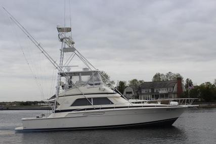 Bertram 50 Convertible for sale in United States of America for $249,000 (£187,000)