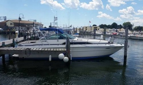 Image of Sea Ray 340 Express Cruiser for sale in United States of America for $17,495 (£12,597) Cheshire, Connecticut, United States of America
