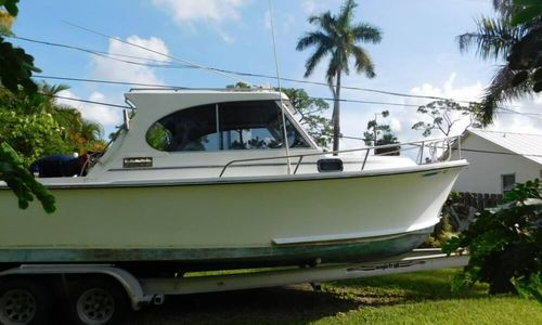 Image of Shamrock 260 for sale in United States of America for $18,000 (£13,653) Gainsville, Florida, United States of America