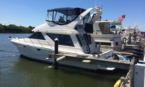 Image of Bayliner 3988 Command Bridge for sale in United States of America for $80,000 (£61,559) Cambridge, Massachusetts, United States of America