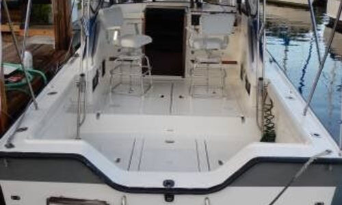 Image of Luhrs Alura 30 for sale in United States of America for $18,900 (£14,336) Fort Lauderdale, Florida, United States of America
