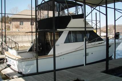 Trojan F-36 Flybridge Cruiser Convertible for sale in United States of America for $25,000 (£18,153)