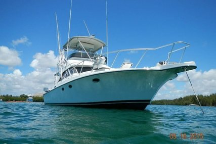 Trojan 12 Meter Convertible for sale in United States of America for $89,000 (£64,559)