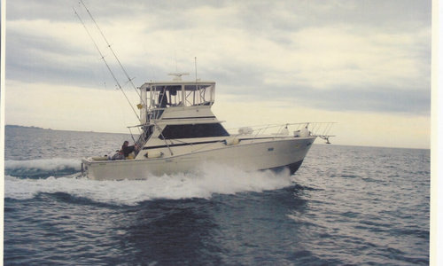 Image of Viking 40 for sale in United States of America for $74,900 (£56,877) Wakefield, Rhode Island, United States of America