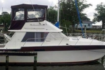 Silverton 34 Convertible for sale in United States of America for $8,000 (£6,063)