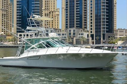 CABO 40 Express for sale in United Arab Emirates for $460,000 (£355,075)