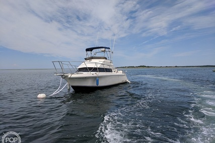 Skipjack 262 Flybridge for sale in United States of America for $39,900 (£31,807)