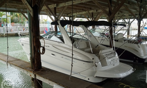 Image of Monterey 270 SC for sale in United States of America for $44,500 (£34,117) Saint Petersburg, Florida, United States of America