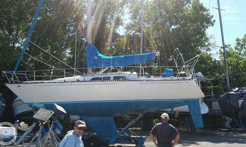 Image of C & C Yachts 34 for sale in United States of America for $15,900 (£12,475) College Point, New York, United States of America