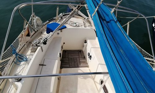 Image of Maybca Delfin 28 for sale in Spain for €21,500 (£19,486) Torrevieja, Spain
